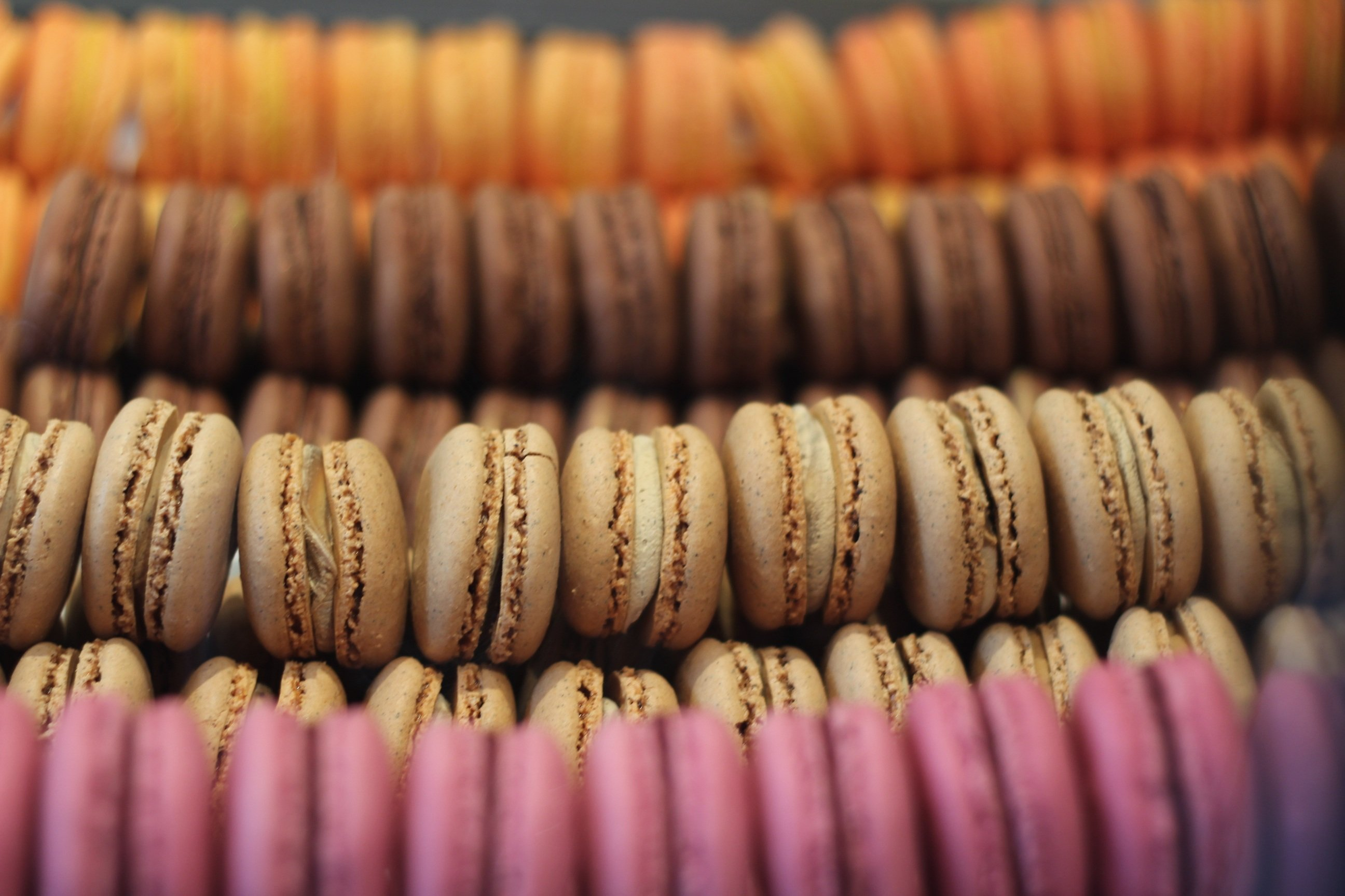 macarons-dessert-bakery-french-macaroons